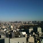 京王プラザホテルからの眺め